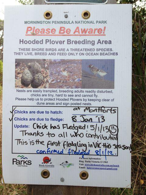 Montforts chick fledged entrance sign