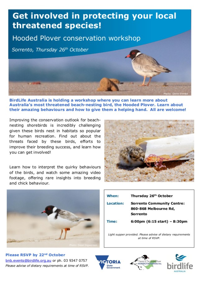 MP Hooded Plover training Workshop Oct 2017